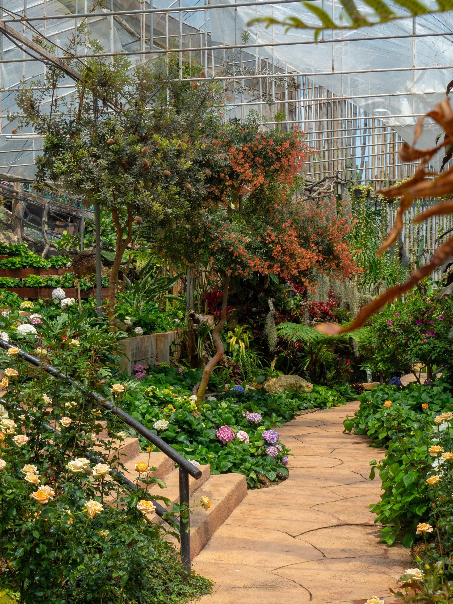سیر باغ سازی در دنیا
