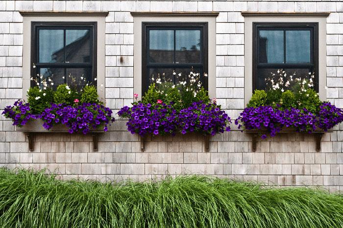 انتخاب پنجره برای منزل